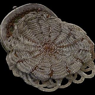 Antique Beaded Purse Reticule Spider Web Design