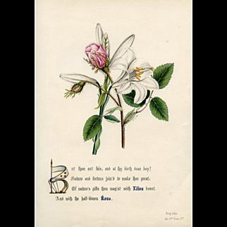 Shakespearean Flower Print, 1846