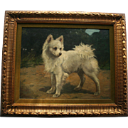 SALE Pomeranian by Well Listed Gabrielle Rainer-Istvanffy (1877-1964) Oil Painting