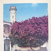 Mario Bucovich Signed Hand Colored Photo of Chautla Mexico 1940s
