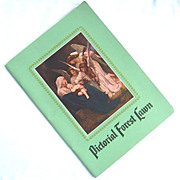Pictorial Forest Lawn Cemetery Illustrated Book 1951