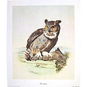 "SALE ""The Lookout"" Signed Numbered E. Howard Burger Owl Print"