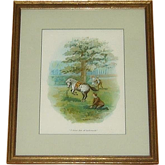 1903 Framed Horse Lithograph Black Beauty Anna Sewell