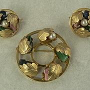 Sarah Coventry Circle Pin/Earrings Set
