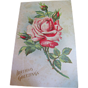 """Birthday Greetings"" Embossed Rose, European Postcard, Circa 1910"