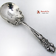 Raphael Alvin Berry Spoon Sterling Silver 1902