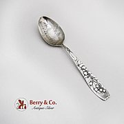 Berry Teaspoon Souvenir Spoon Sterling Silver Whiting 1880