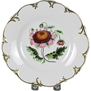 Beautiful Circa 1840 English Hand-Painted Porcelain Plate