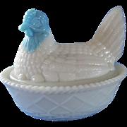 Marked Westmoreland Blue Headed Hen on Nest Salt