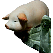 Unusual Pig Jumping Toothpick Holder