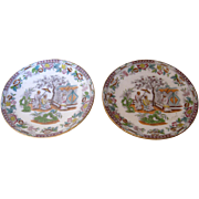 Pair of Old Porcelain Plates with an Exotic Design