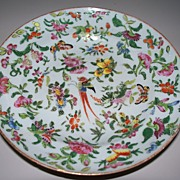 Antique Chinese Deep Plate with Phoenix, Butterflies, Melons Circa 1820