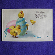 Gorgeous CHICKS DECORATE EGG Easter Antique Postcard Postkarte - Germany