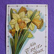 Gorgeous DAFFODIL Antique Estate Postcard
