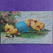 Antique EASTER CHICKS & Pussy Willow Estate Postcard