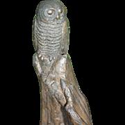 Peter Berryman Owl Statue Cold Cast Bronze Sculpture Southwest Artist