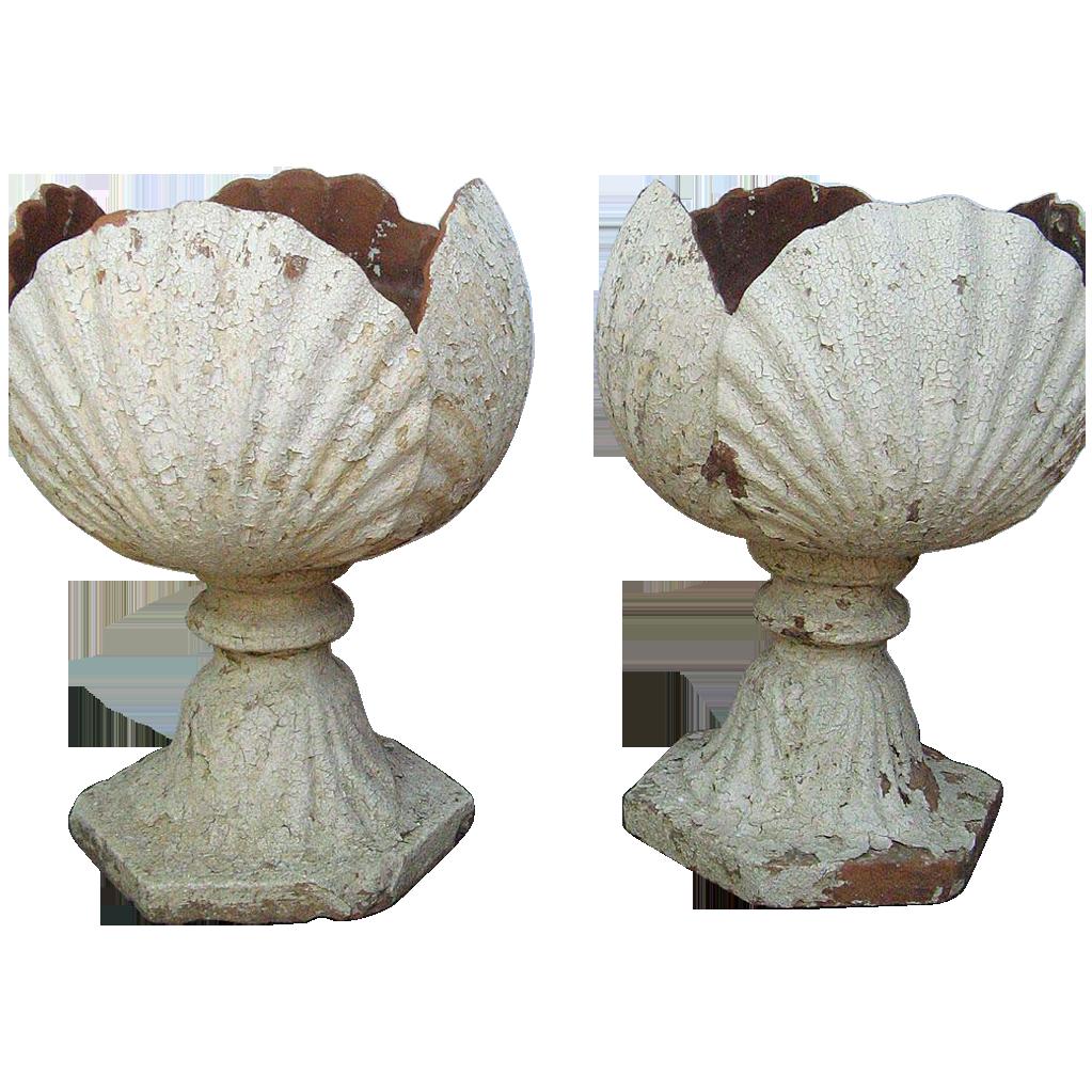 Pair English Terra Cotta Garden Urns Shell Motif