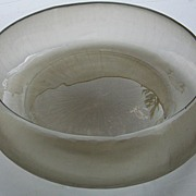 Large Smoked Etched Bowl by Gauxs, Tubingen, Germany