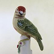 Italian Saffron Finch Figurine