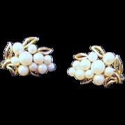 Pair of Trifari Clip Earrings Faux Pearls