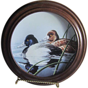 The Lesser Scaup Federal Duck Stamp Framed Porcelain Plate