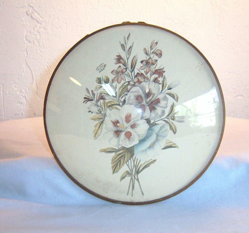 Vintage Flora Print with Convex Glass by Peter Watson's Studio 1950's