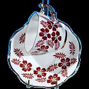 Vintage ROSINA Retro Floral China Teacup & Saucer Set Rust-Red, Light Blue & Gold Metallic #5112