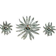 Pretty Silver Tone Omega Back Sunflower Brooch & Earring set