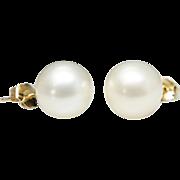 Cultured Pearl Stud Earrings in 14k Yellow Gold