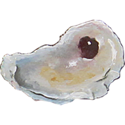 Jocelyn's Oyster Shell