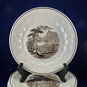 "6 Royal Staffordshire Ironstone Plates ""Colonial Valley"""
