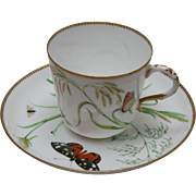 English Cabinet Cup and Saucer with Butterflies and Insects - ca 1880