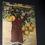 Florida Postcard of Black Child