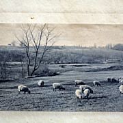 """Historic American Pictorialist Photograph  Circa 1905-20 Charles Henry Sawyer  (American, 1868-1954) """"Oxford Downs"""""""
