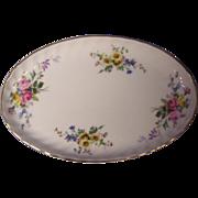 Royal Doulton Arcadia Oval Relish Dish England