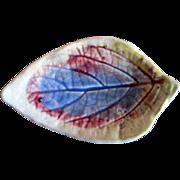 Antique 1880's  Majolica Leaf Shaped Butter Pat