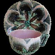 Circa 1880 Etruscan Majolica Shell & Seaweed Cup and Saucer