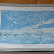 """Limited Edition Print """"After The Storm-Bermuda Then And Now"""""""