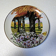 Frost Aster Wildflowers of the South Limited Edition Collector Plate