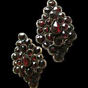 Vintage Earrings Wine Red Garnet Clusters set in Vermeil with Earwires