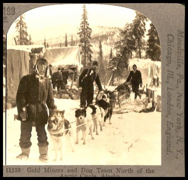 Gold Miners and Dog Team North of the Arctic Circle Alaska - Keystone View