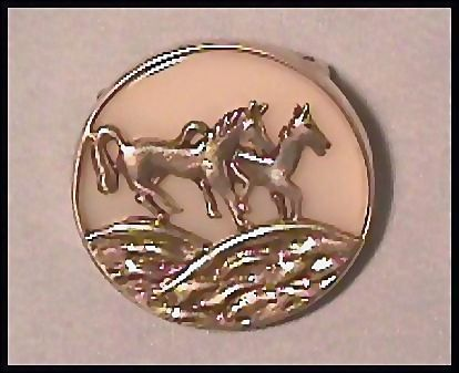 Equestrian Horse Pin  Mother of Pearl Background