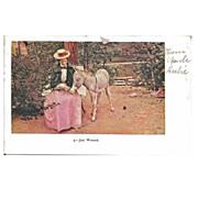 Postcard of Lady Feeding Donkey Milk in a Cup