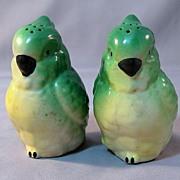 SOLD Green Parakeet Salt and Pepper Shakers