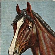 Postcard of Horse from Painting by Dude Larsen