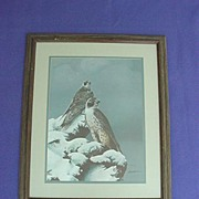 Bill Jaxson Thunder & Fury Hawk Print
