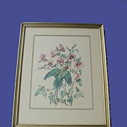 1930's-40's Plum-headed Parakeet Print