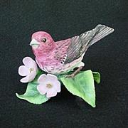 1991 Lenox Purple Finch