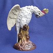 Victorian Sitzendorf Germany Cockatoo Figure