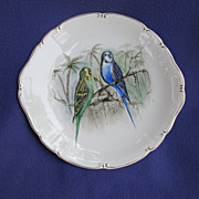 Vintage Hand Painted Parakeet Cake Plate from Germany